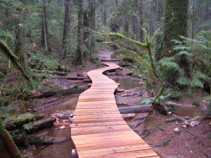 Bridges-Boardwalk